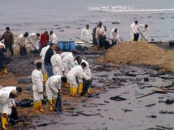 Oil Spill Cleanup Workers.jpg