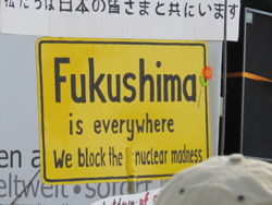 fukushima_is_everywhere.png
